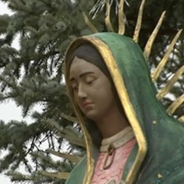 CANCELLATION | Our Lady of Guadalupe Activities at the Shrine in Desplaines